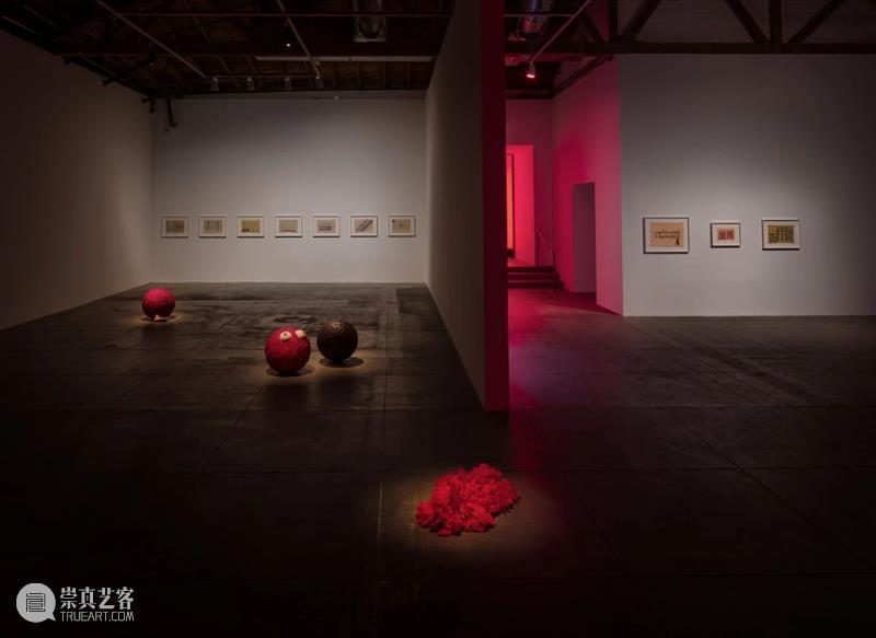 H&W展览:豪瑟沃斯洛杉矶艺术中心呈献莉吉娅·佩普个展「图皮南巴」 莉吉娅 佩普 皮南巴 个展 豪瑟沃斯洛杉矶艺术中心 巴西 艺术家 运动 成员 Lygia 崇真艺客