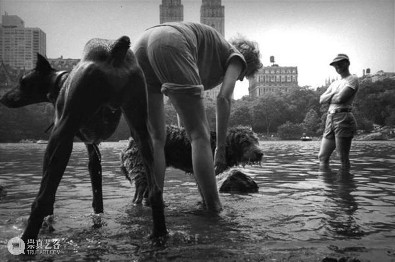 一般摄影师拍的是人,而一流的摄影师拍的是灵魂 摄影师 灵魂 海曼 纽约市 高中时 后来 哥伦比亚大学 技能 学生 时代 崇真艺客