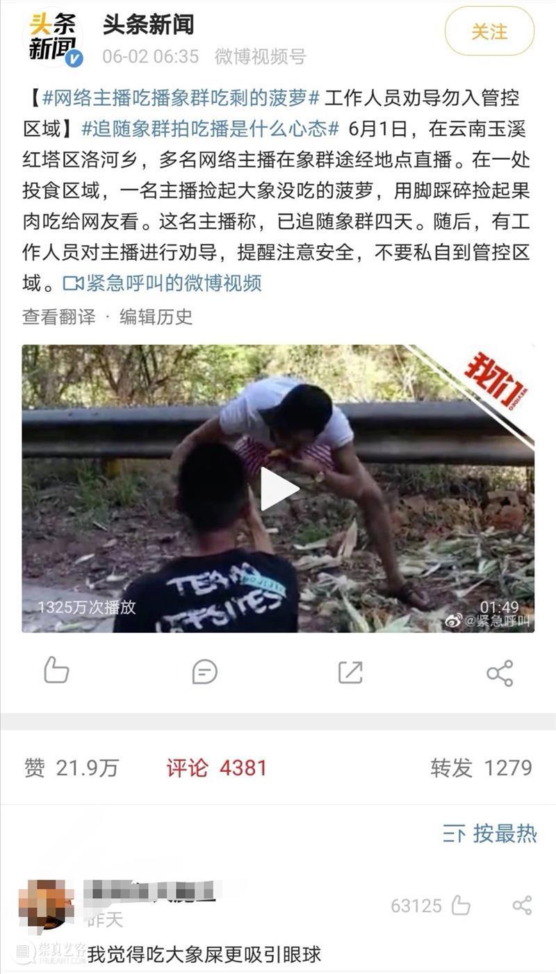 大象,大象,你们去哪里呀? 大象 云南 新闻 农田 经济损失 截图 微博 此事 网络 主播 崇真艺客