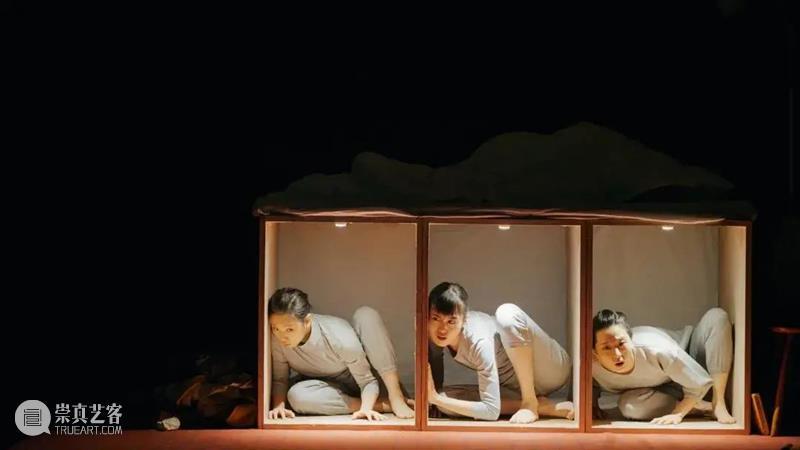 《嘿!我失眠了》上话即将开演!|对话导演山田由梨  上海话剧艺术中心 山田 导演 以下 内容 阿那亚 戏剧节 小伙伴 时间 工作时间 强度 崇真艺客