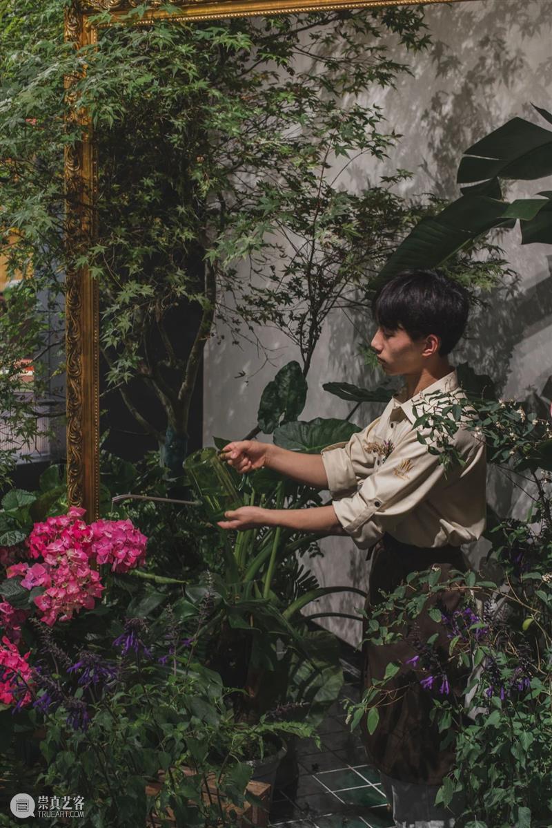 三渊PROJECT | 猛虎玫瑰:都市远去,安享琥珀的自然之境 猛虎 玫瑰 琥珀 都市 PROJECT 自然之境 LIFE and ART here 崇真艺客