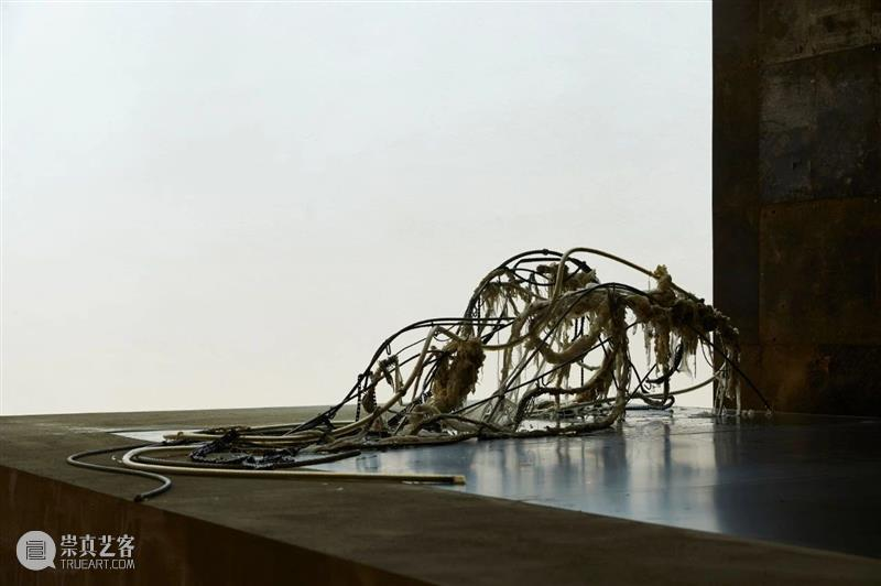 动态   天线空间宣布代理艺术家李美来Mire Lee 艺术家 天线 空间 李美来 Lee 动态 Artist Portrait 肖像 韩国 崇真艺客