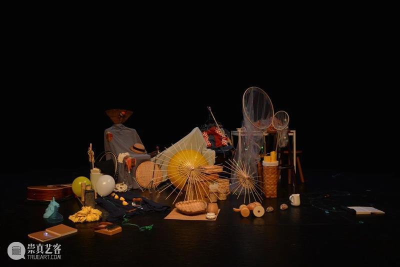 策展手记丨发现种子的喜悦 种子 策展 手记 前滩 青年 创艺 计划 文化 演艺 中心 崇真艺客