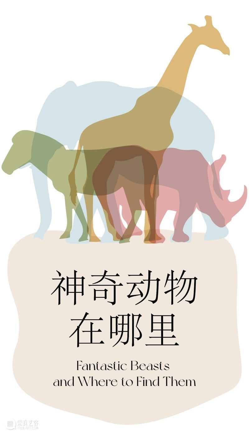 LONG活动 | 本周日儿童工作坊:神奇动物在哪里 儿童 工作坊 活动 LONG 动物 以上 二维码 龙美术馆 官方 微店 崇真艺客