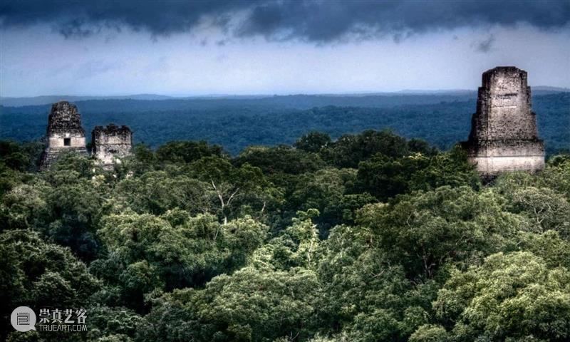 古代文明何以在森林中建造城市? 城市 文明 古代 森林中 柬埔寨吴哥窟 塔布隆寺 Mark 利维坦 失控玩家 结尾处 崇真艺客