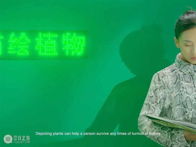 邀你参加开幕酒会  《异化的自然》展览第二部分 异化的自然 部分 酒会 展览 韩培培策划 上海塞万提斯图书馆 塞外 空间 艺术家 弗朗西斯科 崇真艺客