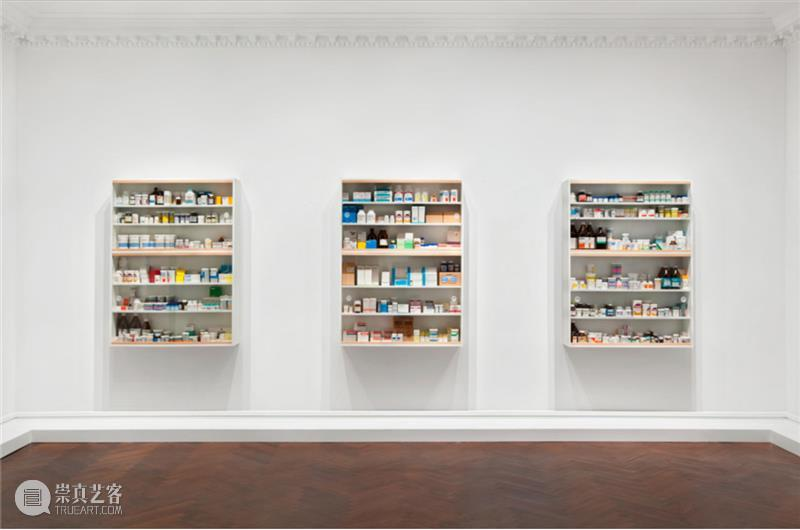 Damien Hirst个展「Cathedrals Built on Sand」正在高古轩巴黎展出 Damien Hirst 巴黎 个展 高古轩 医学 艺术 达米恩·赫斯特 DACS Photo 崇真艺客