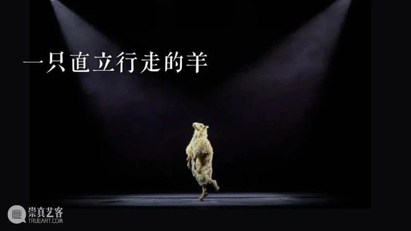 剧看世界 我们是穿着戏服的猴子,不曾回望宇宙的奇迹。 戏服 猴子 宇宙 奇迹 Mercier蒂奥 梅西耶 法国 视觉 艺术家 蒂奥 崇真艺客