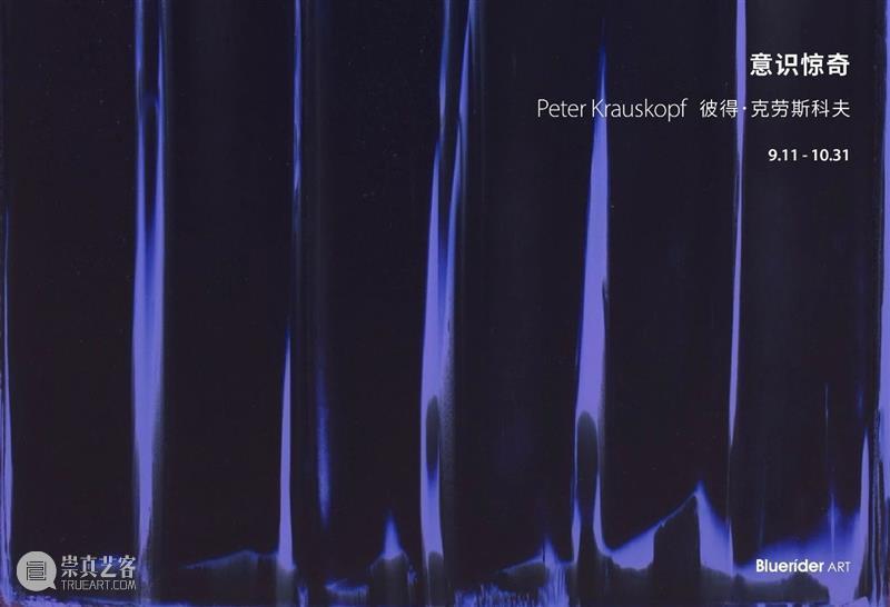BlueriderSky 开幕曰現場 台北·敦仁 意识惊奇 台北 敦仁 意识 Peter 彼得 克劳斯 科夫 亚洲 藏家 宾客 崇真艺客