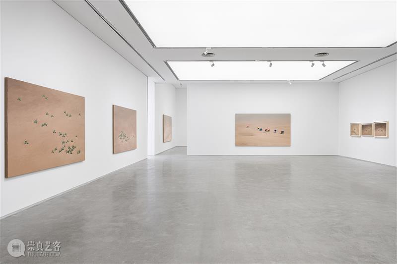 闫冰:风、记忆的孔洞与旅程  艺术人文  闫冰 香格纳画廊 崇真艺客