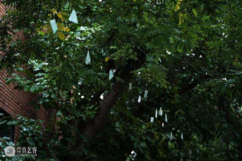 翡翠之声充塞耳、满眼尽为翡翠绿—— 何云昌大型装置再现故乡的森林 视频资讯 Wind H 何云昌 翡翠 装置 故乡 满眼 森林 重影 个展 现场 媒体 崇真艺客