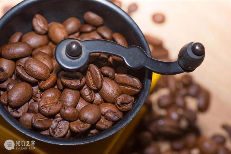讲座招募    北京民生x知乎:从植物种子到文化符号咖啡豆经历了什么? 文化 符号 种子 咖啡豆 讲座 北京 民生 植物 life 苦中作乐 崇真艺客