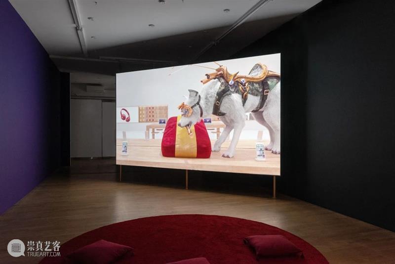 『影映』单元参展画廊 | bitforms gallery 画廊 单元 空间 艺术家 乔纳森·莫纳汉 Monaghan 新技术 职业 中期 过程 崇真艺客