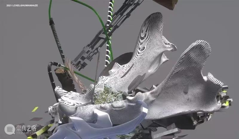 接力,棒!——交叉小径的花园 交叉小径的花园 计划 2022冬奥会 艺术 项目 Realay Bravo jardín 时间 国内 崇真艺客