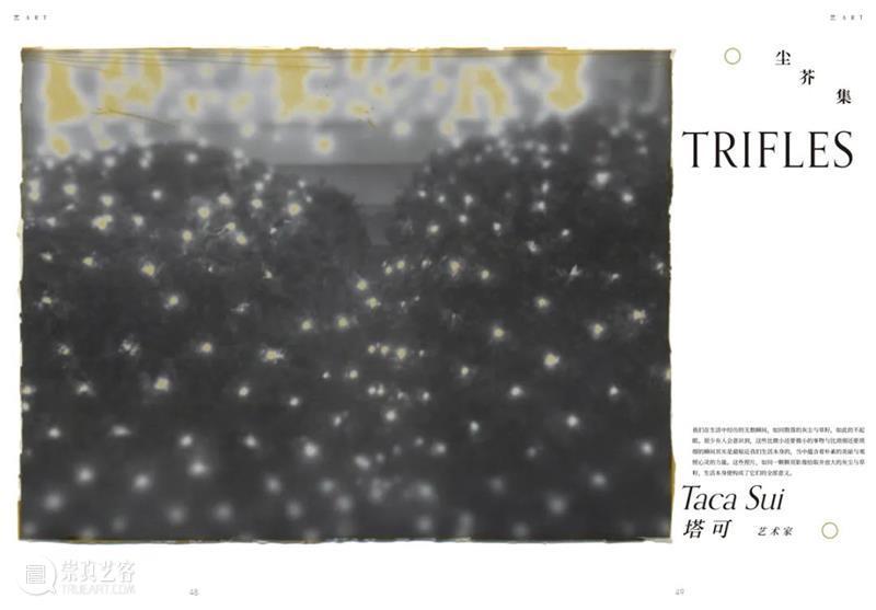 特约媒体合作伙伴   艺术商业 艺术 商业 媒体 伙伴 影像 上海艺术博览会 亚太地区 影响力 博览会 上海展览中心 崇真艺客