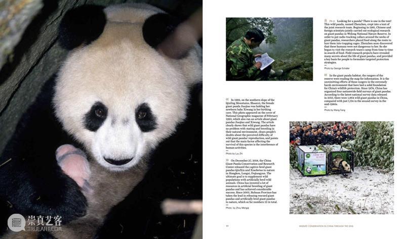 COP15倒计时8天,保护生物多样性,我们需要你的加入 生物 多样性 倒计时 中国 雄心 国家 地理 图书 联合国 环境 崇真艺客