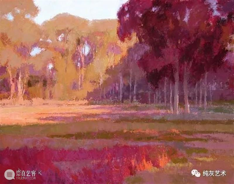 表达自然光的色彩 自然光 色彩 颜色 主题 美国 画家 Camille 户外 光线 形式 崇真艺客