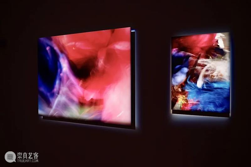 【展览现场】关于花的三重想象   北京 北京 现场 海报 详情 花策展人 艺术家 余若婕 展期 地点 三影堂摄影艺术中心 崇真艺客