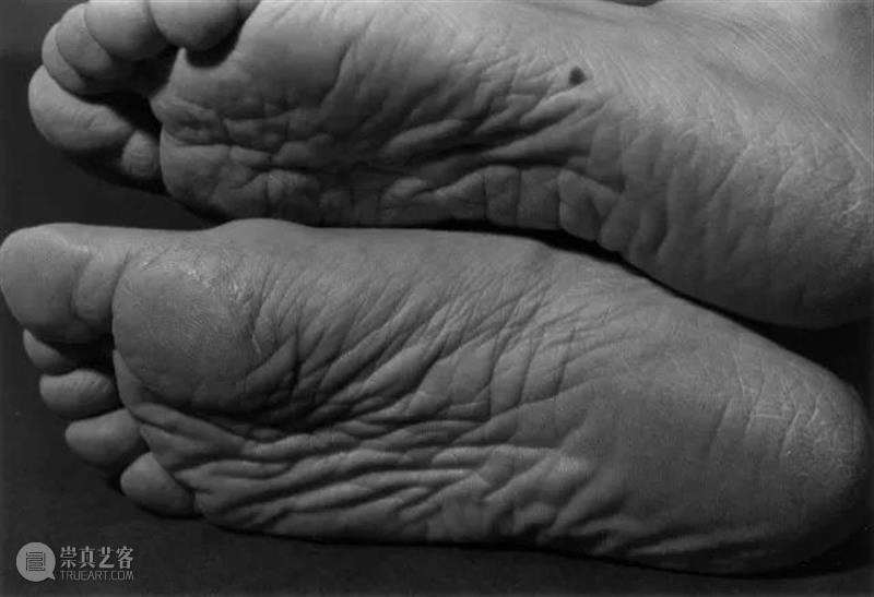 【线上精品课】细江英公身体表演与石内都时间的伤痕  三影堂摄影艺术中心 线上 精品 细江英公 身体 石内都 时间 伤痕 三影堂 计划 课程 崇真艺客