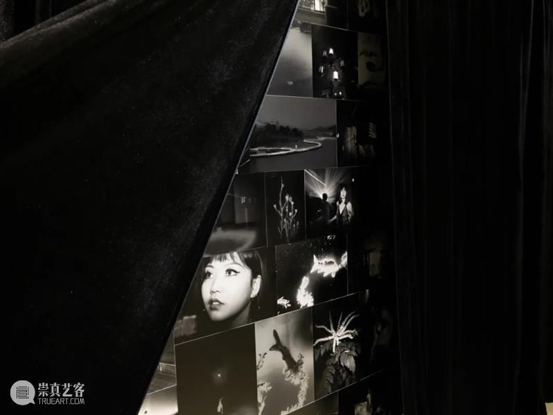 悦·美术馆|迟日摄影节展览回顾 悦·美术馆 迟日 盛况 现场 迟日摄影节 北京798艺术区 北京悦·美术馆 青年 平台 包邮区图片社 崇真艺客