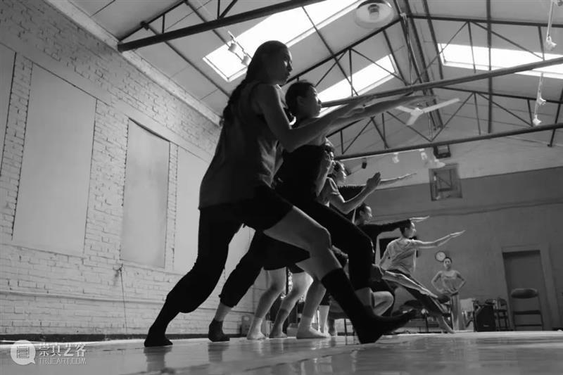 专业击剑队教练指导3个月,这部现代舞要击剑搬上舞台 现代舞 击剑队 教练 舞台 专业 中国 上海国际 艺术节 侯莹 舞蹈 崇真艺客