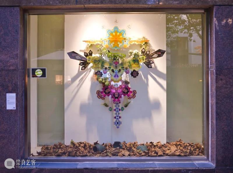 在科学和艺术之间,弗朗西斯科•豪斯《创世纪花园》 《创世纪花园》 弗朗西斯科 豪斯 科学 艺术 之间 Garden 创世纪花园 装置 Hauss 崇真艺客